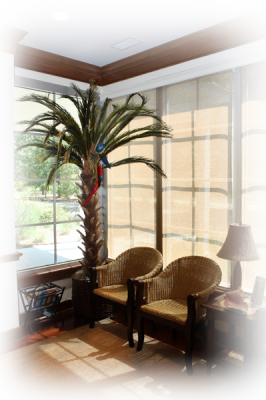 Though Island Dermatology is a medical facility, Dr. Warren decorated his practice to emulate a relaxed, inviting, island feel.